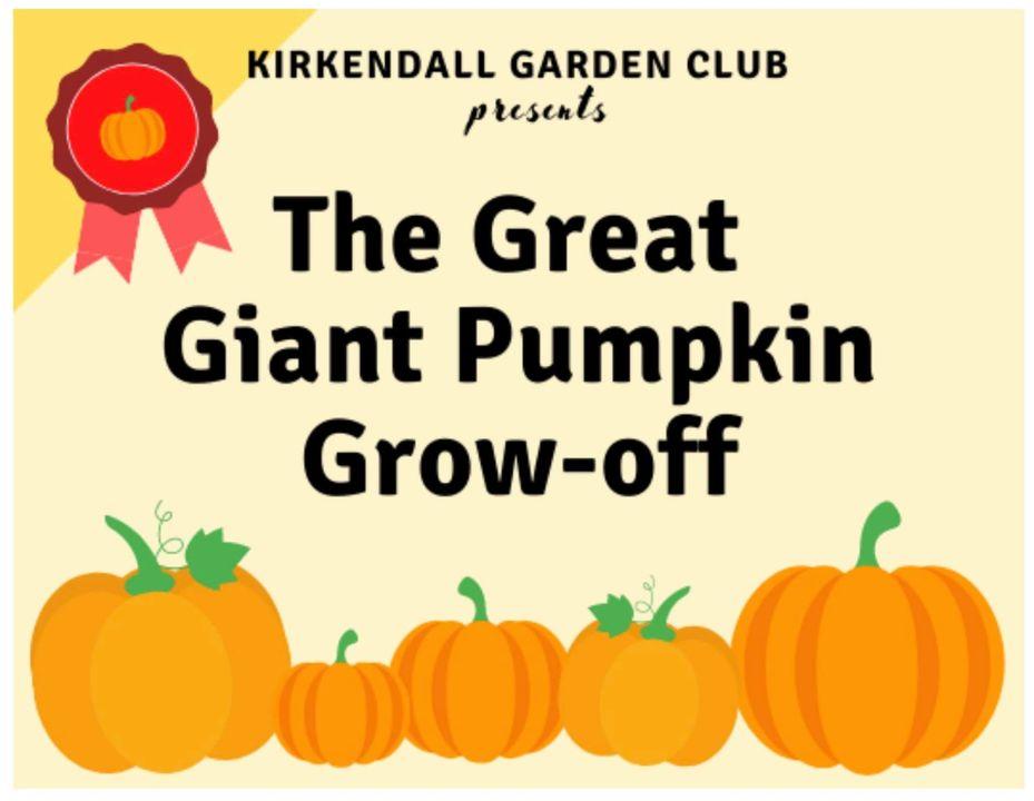 Giant pumpkin grow off